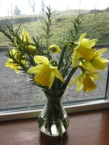 spring-2010-001