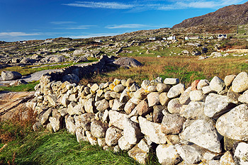 Stone Wall in Countryside, Connemara, Ireland