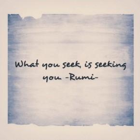 what_you_seek